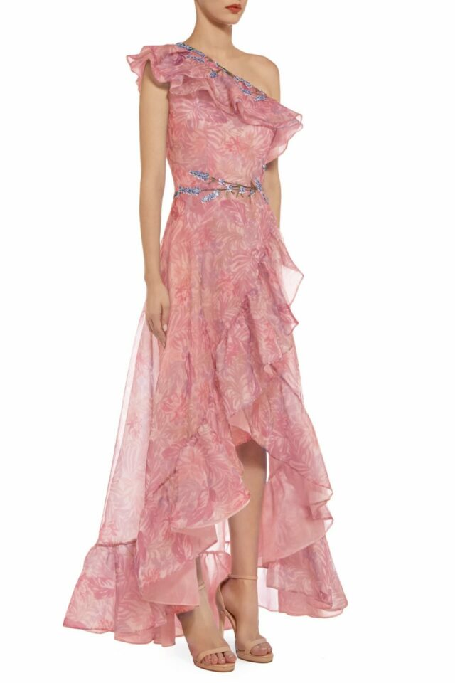 Trine Printed-Silk Organza Dress